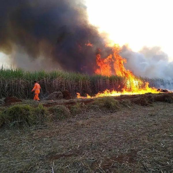 Incêndios de grandes proporções continuam devastando vegetações em Guaxupé e na região